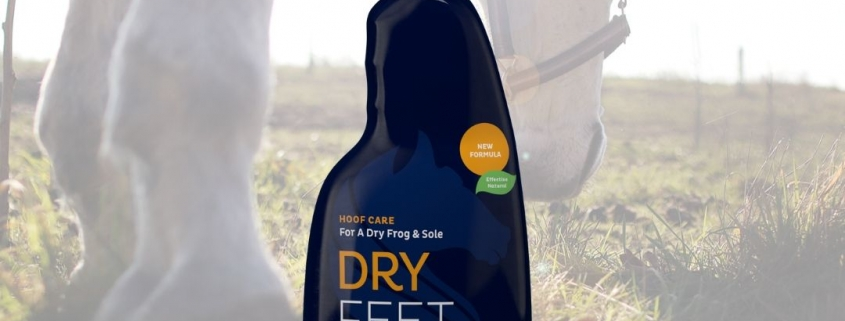 nieuw product: cavalor dry feet natural
