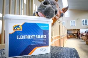 elektrolyten cavalor