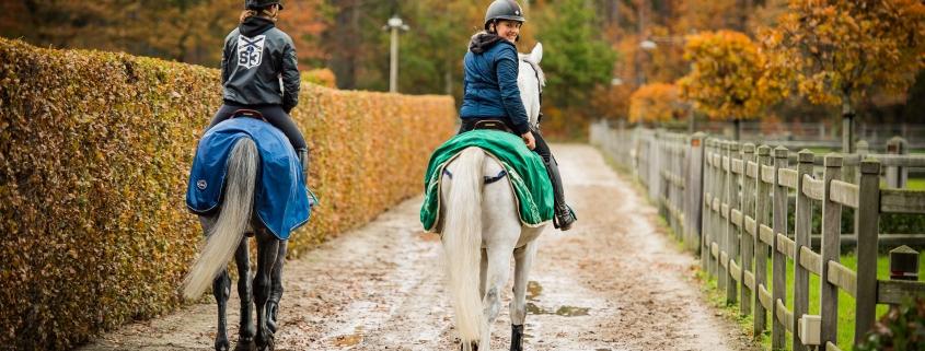 Cavalor seizoen detox
