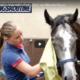Cavalor naverzorging Skin Care
