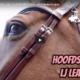 Vlog Hoofdstel Legend LJ Leathers